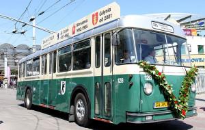 Gdynia: ruszają linie plażowe, ale autobusu do zoo nie będzie
