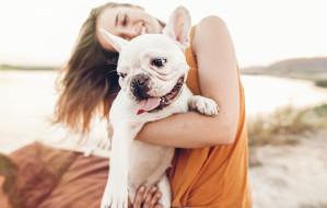 Pies na wakacjach w Trójmieście. O tym warto pamiętać