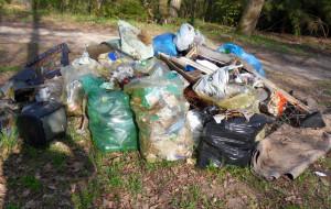 Pięć ton śmieci zebrali w Trójmiejskim Parku Krajobrazowym