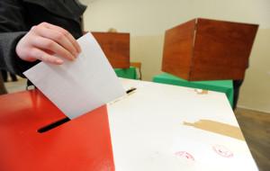 Wybory: jak tu wierzyć w sondaże?