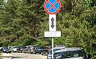 Kuriozalne znaki ułatwiają parkowanie w lesie