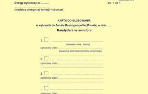 Karty do głosowania - jak wyglądają?