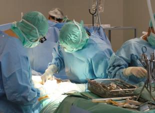 Transplantacje w dobie pandemii. Ponad 200 przeszczepów w tym roku