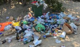 Czy plaże powinny być sprzątane częściej?
