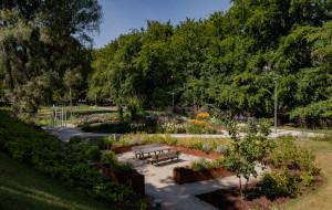 Parki w Gdyni alternatywą dla plaży