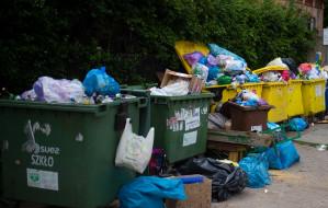 Są pierwsze kary za brak segregacji śmieci