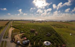 Labirynt w kukurydzy, gry parkowe, a może Monopoly Gdynia. Planujemy weekend