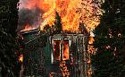 Ciało w spalonej altanie na terenie ROD w Gdańsku