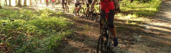 Bezpłatne wycieczki rowerowe. Pierwsza już w czwartek