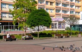 Libacje i awantury na placu przed Cristalem. Straż miejska rozwiąże problem?