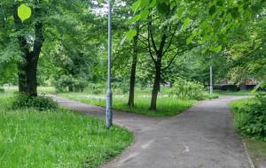 Park Steffensów trafi do rejestru zabytków
