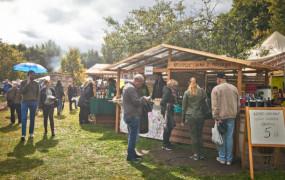 Odkrywaj Pomorskie: lokalne produkty, ekobazary i sezonowe menu