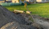 Przy budowie Kartuskiej zniszczono młode drzewa. Będą nowe nasadzenia