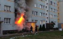 Środowy pożar na Żabiance był wynikiem...