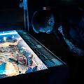 """Wykopaliska z dna morza. O wystawie """"Do DNA"""" w Narodowym Muzeum Morskim"""