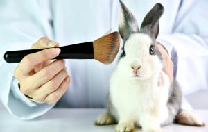 Kosmetyki wegańskie - czym są i komu służą?