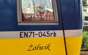 Żółwik i Classic - SKM nadała nazwy pociągom