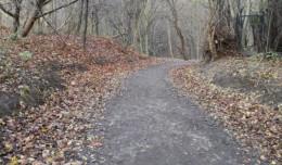 Będzie remont leśnej drogi na Polankę Redłowską