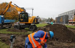 Ogród deszczowy w centrum Gdańska. Uchroni przed powodzią?