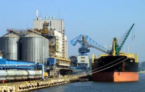 Państwowa instytucja chce kupić terminal zbożowy w Porcie Gdynia