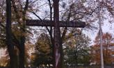Pomazano krzyż na Cmentarzu Ofiar Hitleryzmu na Zaspie