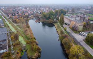 Nowe tereny rekreacyjne nad Opływem Motławy. Gdańsk szuka wykonawcy robót