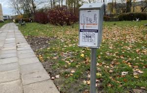Gdynia: mieszkańcy sprzątają, więc torebki na psie odchody są niepotrzebne