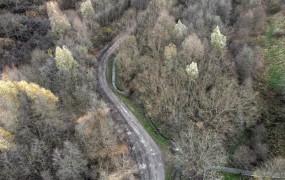Uzupełniają ścieżkę między parkiem Oruńskim a Łostowicami