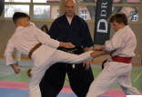 Grad medali karateków z Trójmiasta