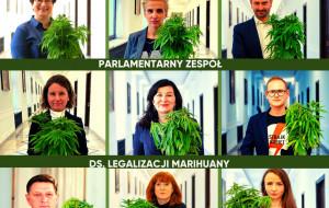 Posłowie z Trójmiasta w zespole ds. legalizacji marihuany. Gdzie jeszcze?
