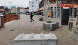 Nie ma drzew w centrum Gdańska. Radni apelują, by to zmienić