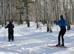 Dokąd na narty biegowe w Trójmieście?