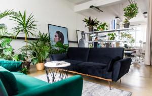 Trójmiejskie Biura: studio kreatywne Hiday pełne roślin