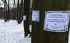 Brzeźno: protest przeciwko nowej zabudowie przy molo. Projekt planu czeka na uchwalenie
