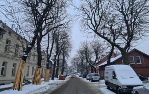 Rusza przebudowa trzech ulic w Nowym Porcie