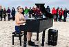 Wyjątkowy koncert pianisty-morsa