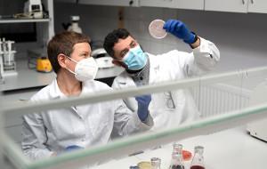 Naukowcy stworzyli wyjątkowe drożdże do produkcji białek