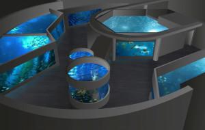 Dodatkowe pieniądze na rekiny i płaszczki w Akwarium w Gdyni