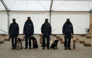 Pies gdyńskich celników wywęszy COVID