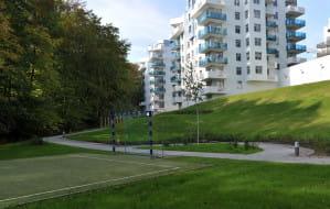 Barometr Cen Nieruchomości. Mieszkania pod lasem