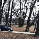 Jeździł autem po parku Steffensów