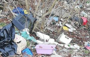 Śmieci z ogródków działkowych są podrzucane gdzie popadnie