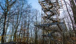 Nie będzie nowej wieży widokowej na Witominie