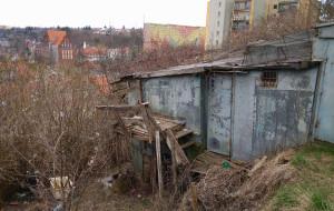 Siedlce. Martwy lis powieszony na budynku