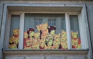 Rudy Kot wróci do żywych? Lokal do wzięcia