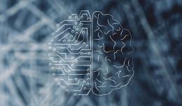 Sztuczna inteligencja wykryje nowotwór? Aplikacja doktorantki z PG