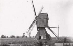 Żuławskie wiatraki i ich historia