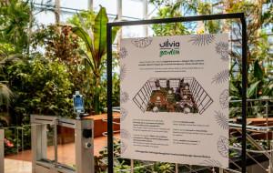 Tropikalny ogród pomiędzy biurowcami już otwarty