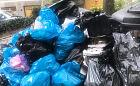Podwórka w centrum Gdańska pełne śmieci