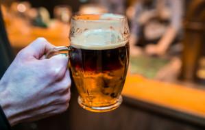 Ceny piwa w trójmiejskich lokalach. Drogo czy w normie?